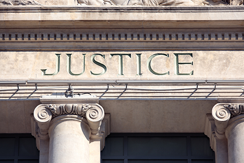 Civil Rights Litigation